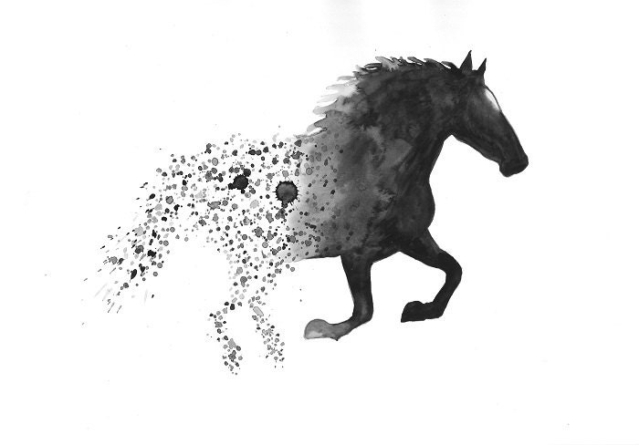 Wall Art Black Horse : Horse art print a black and white wall home by