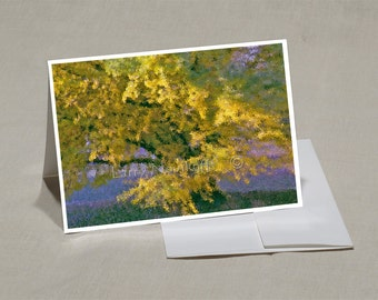 Prints-Greeting Cards-5x7 Set of-5-Original Photos-Blank Inside--Prints from 8x12-Computer-Abstract Art - SET X02