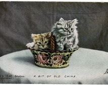 "Vintage CAT Postcard 1906 Antique RPPC Tuck's Real Photo Cats Postcard ""a Bit Of Old China"" Two KITTENS In A Basket Landor's Cat Studies"