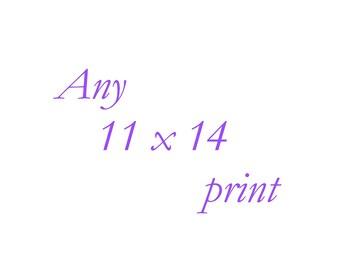 Any 11x14 Print - Your Choice