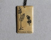 Botanical Necklace - Botrychium lunaria