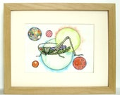 Colorful Grasshopper Print - Matted for 8 x 10 Frame
