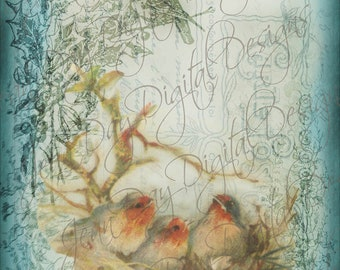 French Birds in Nest Collage Digital Collage - French Postcard Tag - Script Instant Digital Download FrA129