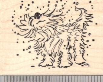 Wet Dog Rubber Stamp, Summer Fun at the Pool J18111 Wood Mounted