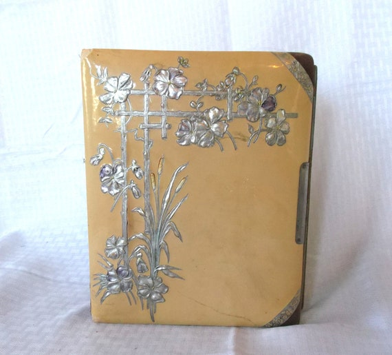 Victorian Celluloid Photo Album With Pictures from Ohio