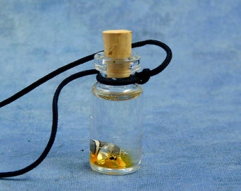 Hermit Crab Specimen Jar Necklace, Handmade Science Jewelry