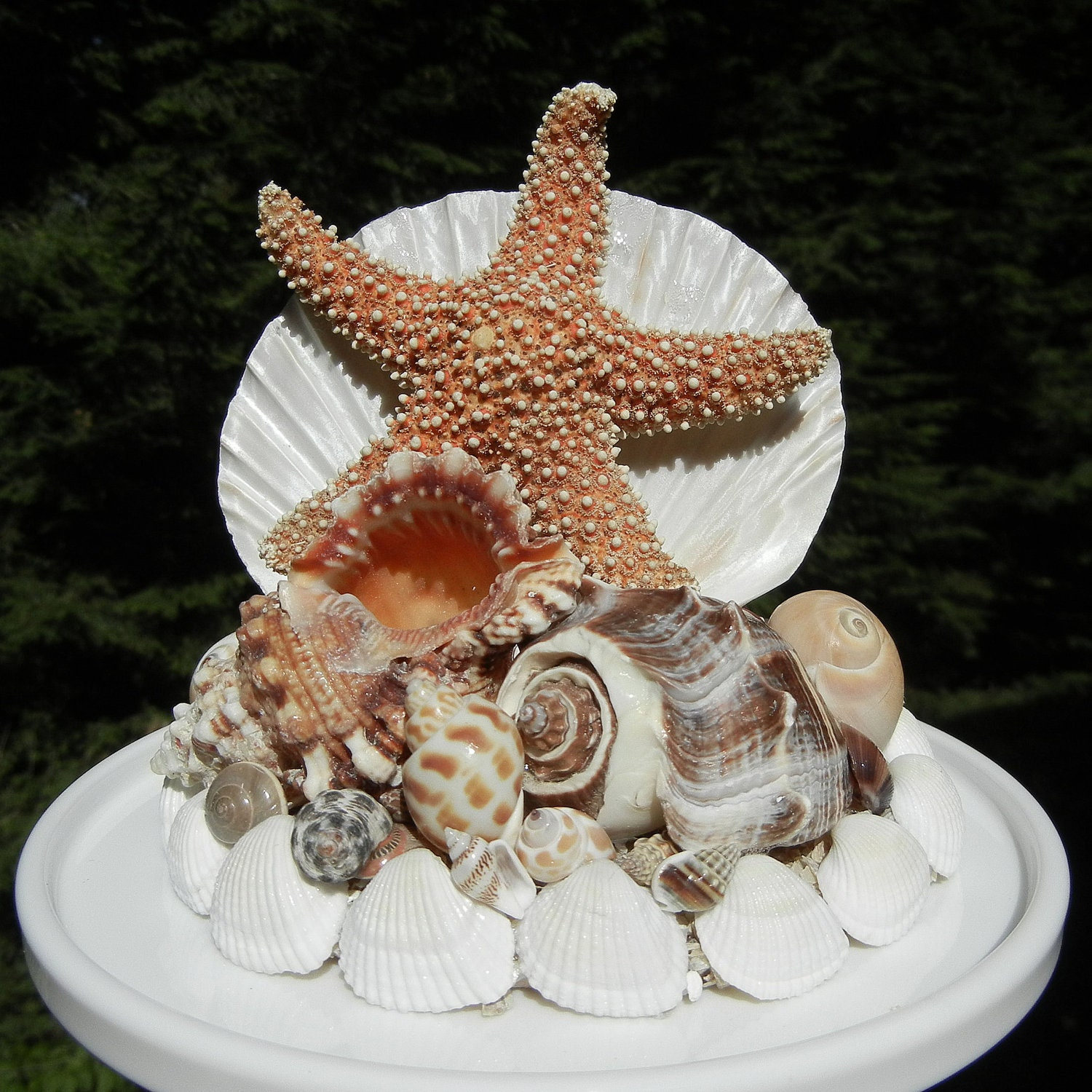 tropical wedding cake toppers items similar to seashell wedding cake topper tropical 21280
