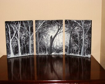 """10"""" h x 24"""" w, Black and White Forest, Set of 3,"""
