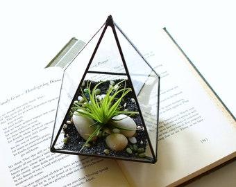 Terrarium, Glass Pyramid Planter with Air Plant, DIY Kit, Desk Accessory, Air Plant Container