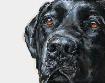 Black Labrador - Collectable Ltd. Ed. Fine art print