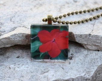 CLEARANCE~Glass Photo Pendant Necklace Impatiens Red Flower, Floral Jewelry, Buy One Get One Free