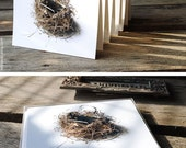 SALE - Your Choice of 6 Bird's Nest Inspired Cards - Recycled Paper Stationery - 20% OFF