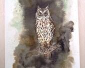 Owl watercolor original illustration