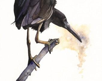 Heron watercolor painting -Bird nature wildlife art-  print of watercolor painting 5 by 7 print, bird art, wall art, home decor