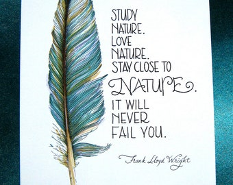 Feather Art Print - Nature Quote - Frank Lloyd Wright - Teal Blue - 5x7 Print