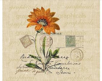 Orange flower French ephemera print Paris Digital download graphic image for Iron on fabric transfer burlap paper pillows tote bags No. 439