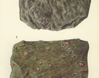 Vintage Print Rocks and Minerals 168, Almandite Pyrope