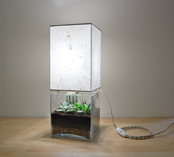 Large Square Column TerrariumDisplay Table Lamp with -> Terrarium Table Basse
