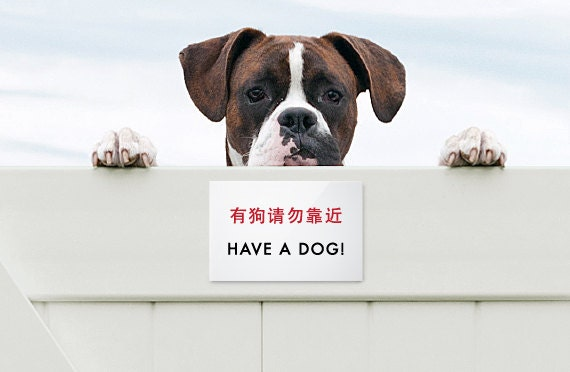 Funny Sign Fail for Dog Fences. Chinglish Humor for Pets. Have a Dog