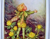1930s The WINTER ACONITE FAIRY Cicely Mary Barker Print Ideal for Framing