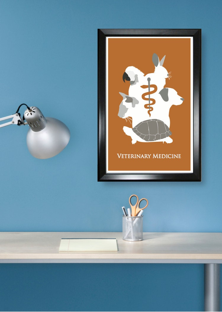 Minimalist Classroom Games : Veterinary medicine tech minimalism poster by