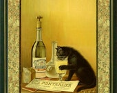 THIRSTY CAT - Vintage Art Print  - Art Nouveau