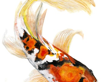 butterfly koi fish watercolor print signed by artist Stephanie Kriza