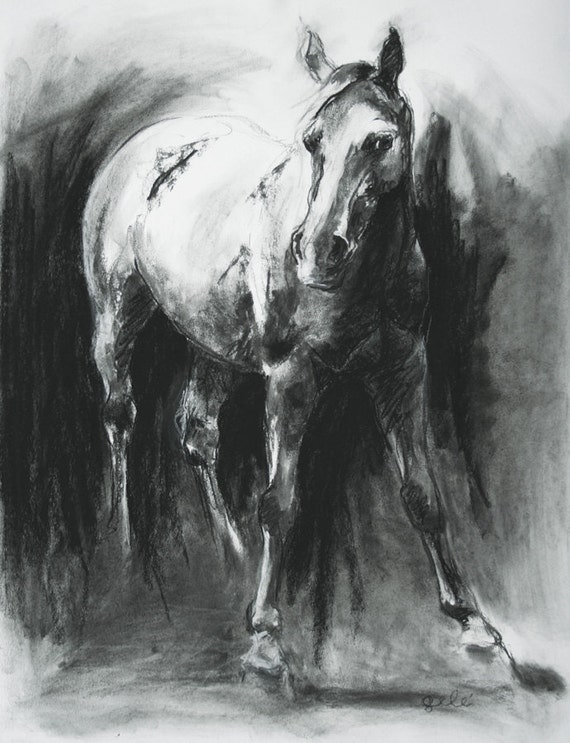 Original Black and White Charcoal Drawing Horse by ...