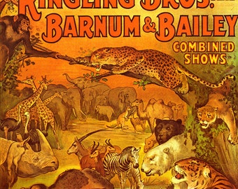 Circus Poster Wild Animal Menagerie Ringling Bros Barnum & Bailey USA 1920s Poster Full Color Advertisement Lithograph To Frame
