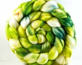 SPROUT 40/40/20 superwash  merino/merino/tussah silk roving 4.1 oz Free u.s. Shipping