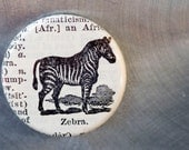 One of a Kinda Vintage Magnet - Zebra