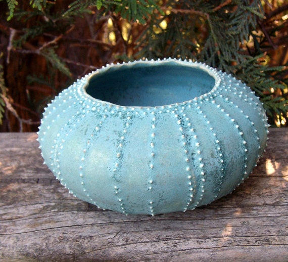 succulent planter turquoise blue sea urchin plant pot made from stoneware clay