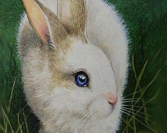 4x6 Inch Blue Eyed Bunny Art Giclee Print by Melody Lea Lamb