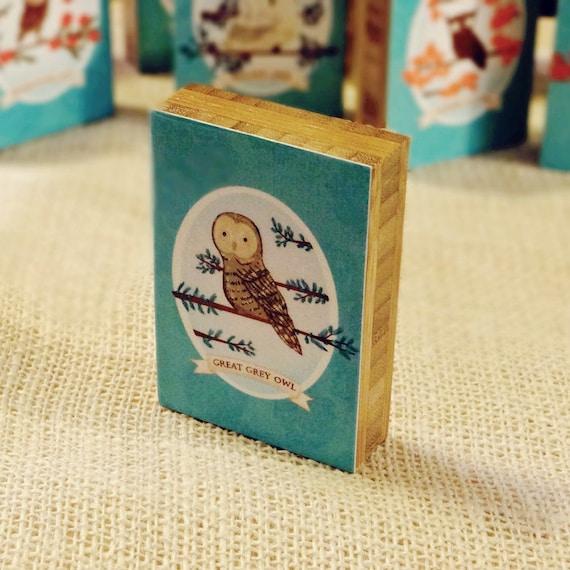 Great Grey Owl Mounted ACEO Print  - owl art cute decor gift plywerk nursery kids 2.5 x 3.5 inches