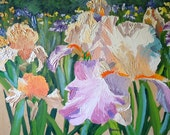 Original Impasto Oil Painting, Can You Say Irises, impressionist colorful pink purple flower art