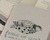 Colouring Book - Birds We Lost