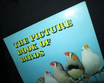 1965 Picture Book of Birds