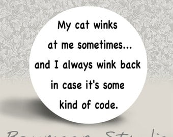 My Cat Winks at Me Sometimes - PINBACK BUTTON or MAGNET - 1.25 inch round
