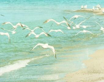 CLEARANCE Beach Photography, Spring, Mint, Turquoise, Seagulls, Pastel Aqua Blue Ocean, Nature Flock of Birds, 5x5 inch Print - Aloft