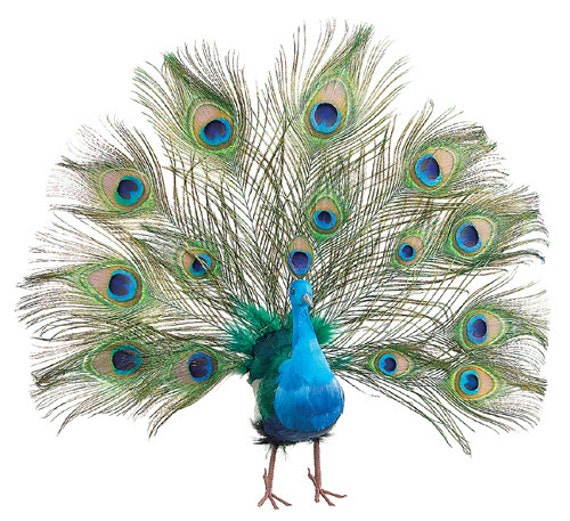 Peacock feathers wedding christmas tree topper decoration ornament