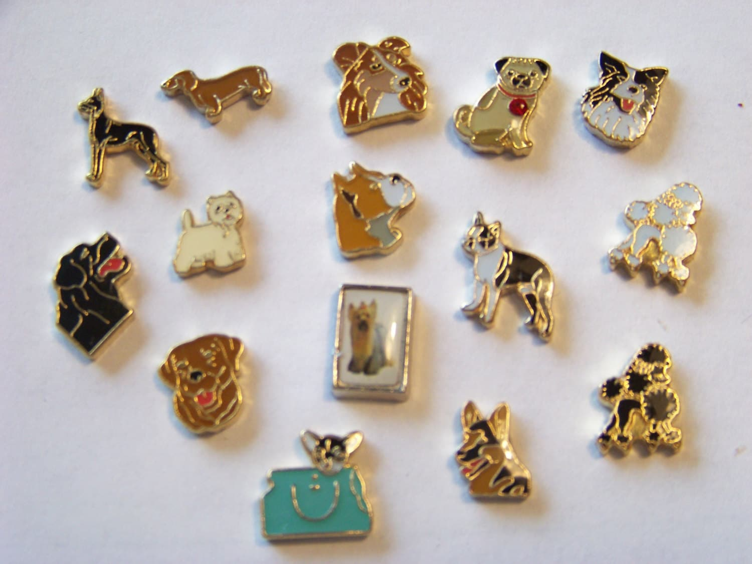 floating dog breed charms choose 1 see availibility by