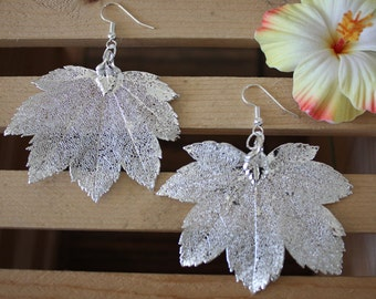 Medium Leaf Earrings Silver, Real Full Moon Maple Leaf Pendant Size Sterling Silver Earrings, LEP 4