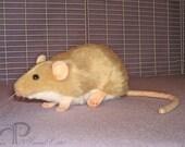 Beige Berkshire Rat Plushie