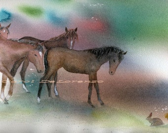 Watercolor Painting Horse Art, Horse Painting, Horse Art Print, Horse Watercolor, Print Of Original Watercolor Titled Mustang Curiosity