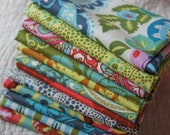 Cameo by Amy Butler Fat Quarter Set, The Tall Stories Collection