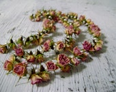 Dried Pink Rose and Pearl Garland