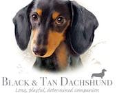 """DACHSHUND Tan & Black Smooth dog with Phrase on One 18"""" x 22"""" Fabric Panel for Quilting and Sewing"""