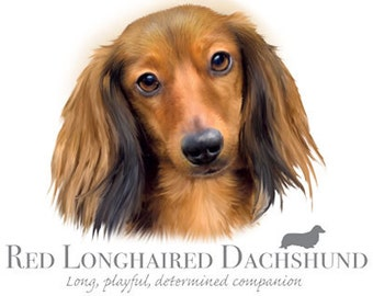 """DACHSHUND Red  Longhair dog fabric with Phrase on One 18"""" x 22"""" Fabric Panel for Quilting and Sewing.Picture is 10"""" x10.5""""."""