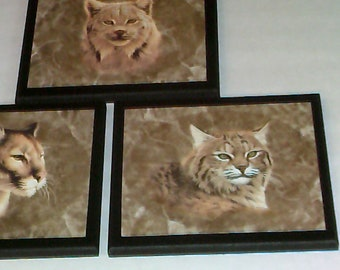 Cougar Lynx Bobcat lodge style wall decor 3 pc set plaques wild cats country home or hunting cabin rustic wooden signs