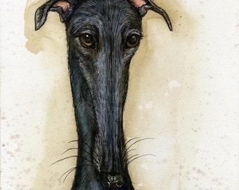 A Little Possession - Greyhound Art PRINT